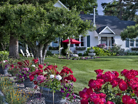 front on inn, lawn, garden, roses, trees, chairs, umbrella, swing