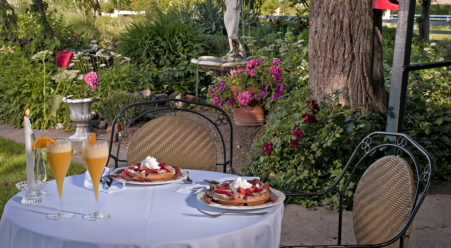 outdoor table, waffles, fruit, orange juice, mimosas, garden